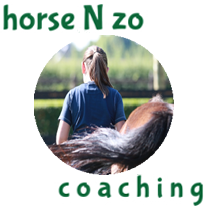 Horse N Zorg.. Coaching